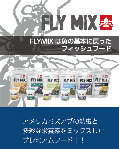 FLY MIX